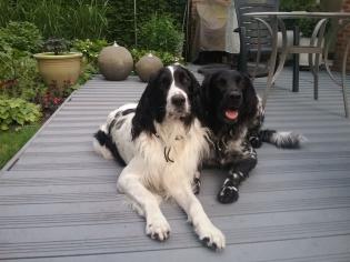 Owin & Titus